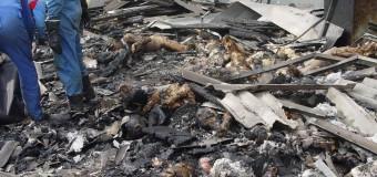 Gazeta Wyborcza: НЕ  ПРОЙШЛО  Й  ВОСЬМИ  РОКІВ,  ЯК Страсбурзький суд визнав, що дітей Беслана вбили не чеченці, а російський спецназ