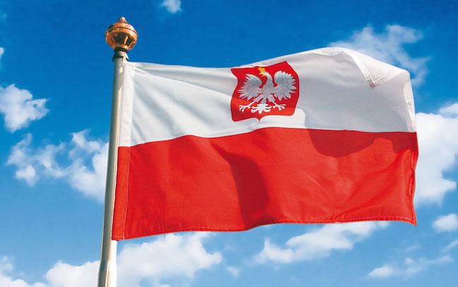 polsha_otmechaet_den_flaga_i_den_polonii