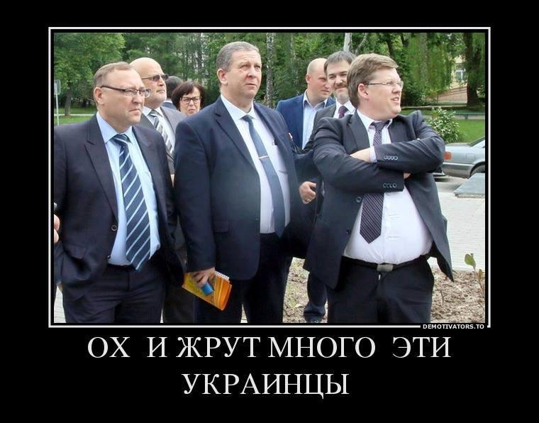 1502540265_oh-i-zhrut-mnogo